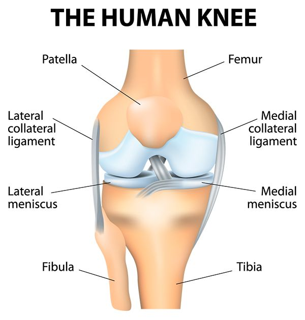 cartilage regrowth for the hip and the knee pemf tech